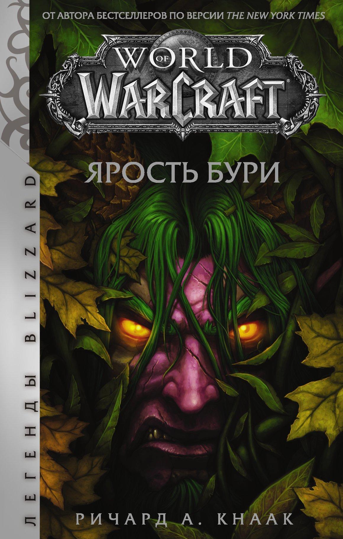 World of Warcraft. Ярость Бури